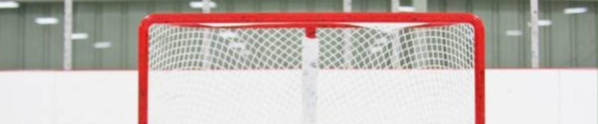 training hockey
